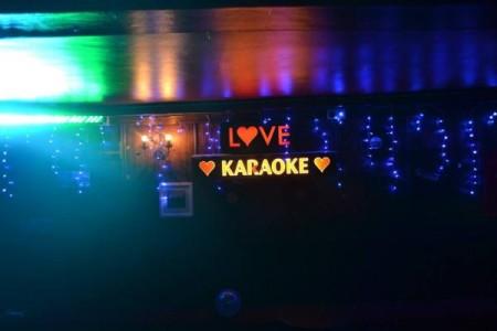 dolphin-karaoke