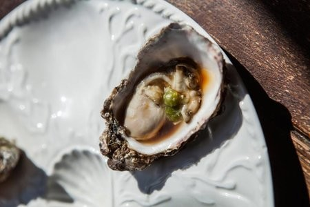 why do oysters make you horny